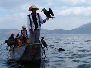 cormorant fisherman on Erhai Lake